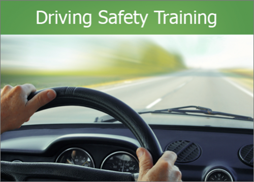 Driving Safety Training